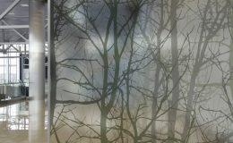 Dekoratif-Cam-Filmi-Ücretsiz-Keşif-0531-778-3458